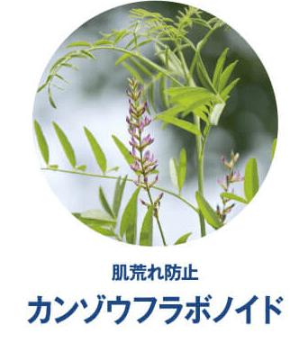 SimiTRY シミトリー 成分 カンゾウフラボノイド